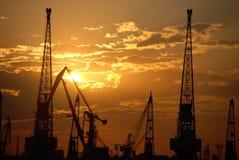 Un bon nombre de grues de construction au fond de ciel de coucher du soleil Photos stock