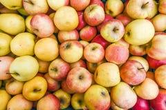 Un bon nombre de pommes colorées sur le marché, texture des pommes Photographie stock libre de droits