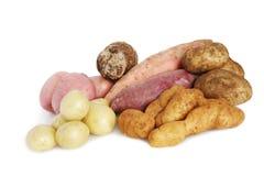 Un bon nombre de pommes de terre Photos libres de droits