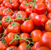 Un bon nombre de tomates rouges mûres empilées Photo stock
