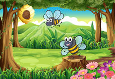 Un bosque con abejas y una colmena Fotografía de archivo libre de regalías