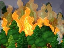Un bosque con desastre del incendio fuera de control Fotografía de archivo