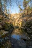 Un bosque del verano con un chorrito en el medio de él fotos de archivo