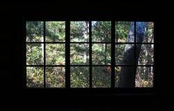 Un bosque en una ventana Fotos de archivo