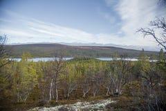 Un bosque hermoso en una ladera Paisaje de madera del otoño en las montañas noruegas Imagen de archivo