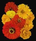 Un bouquet de calendula et de zinnias lumineux de fleurs Photographie stock libre de droits