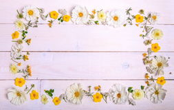 Un bouquet de cosmea ou de cosmos de fleurs blanches avec le ruban sur les conseils blancs Fleurs jaunes de jardin au-dessus d'en Photos libres de droits