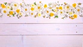 Un bouquet de cosmea ou de cosmos de fleurs blanches avec le ruban sur les conseils blancs Fleurs jaunes de jardin au-dessus d'en Photographie stock libre de droits