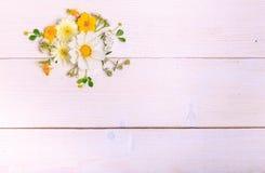Un bouquet de cosmea ou de cosmos de fleurs blanches avec le ruban sur les conseils blancs Fleurs jaunes de jardin au-dessus d'en Images stock