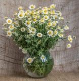 Un bouquet des camomilles dans un vase en verre sur le fond de la toile de jute photo libre de droits