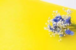 Un bouquet des fleurs bleues et du gypsophila blanc sur un fond jaune images stock