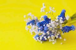 Un bouquet des fleurs bleues et du gypsophila blanc sur un fond jaune photos stock