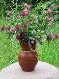 Un bouquet des fleurs de pré Photos libres de droits