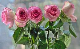 Un bouquet des roses à la lumière du soleil Image stock