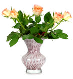 Un bouquet des roses dans un vase en verre sur un blanc Images libres de droits