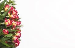 Un bouquet des roses, du jaune et du rouge sur un fond blanc Photos libres de droits