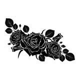 Un bouquet des roses noires sur un fond blanc Photographie stock