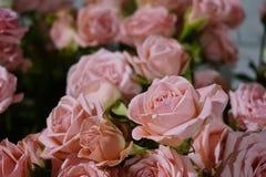 Un bouquet des roses roses en gros plan 8 mars jour, félicitations de jour du ` s de femmes Photographie stock libre de droits