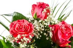 Un bouquet des roses rouges Photo libre de droits