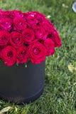 Un bouquet des roses rouges dans une boîte Photo stock