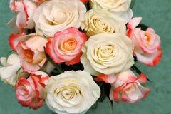 Un bouquet des roses sur le fond vert clair Images stock