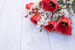 Un bouquet des tulipes et des branches rouges des fleurs blanches contre les conseils blancs Place pour le texte Le concept du re photos stock