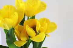 Un bouquet des tulipes jaunes, se ferment  Photographie stock libre de droits