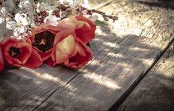 Un bouquet des tulipes rouges et des fleurs blanches sur un fond des conseils en bois et vieux Place pour le texte Le concept du  photographie stock libre de droits
