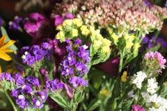Un bouquet merveilleux des fleurs sauvages pourpres et jaunes Petites fleurs de champ wildflowers blancs dans un bouquet cloches  photographie stock