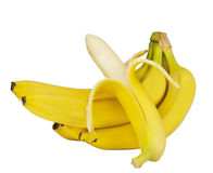 Un branchement des bananes jaunes Photographie stock libre de droits