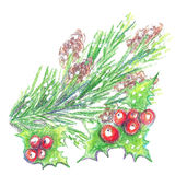 Un brin de houx et d'arbre de Noël Photographie stock