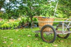 Un Broon e un canestro di vimini sul carretto nel giardino fotografie stock libere da diritti