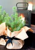 Un brote del pino al lado de una linterna con una vela Foto de archivo