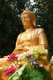Un buddha de oro Imagenes de archivo