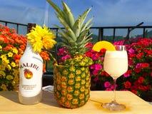 Un buen cóctel de Malibu con la piña Fotos de archivo libres de regalías