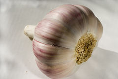 Un bulbo del ajo en un fondo ligero Primer 2 Fotografía de archivo libre de regalías