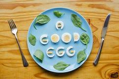 Un buon uovo Fotografia Stock Libera da Diritti