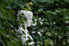 Un busto de mármol adentro entre las hojas fotografía de archivo