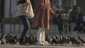Un a cámara lenta de dos mujeres que alimentan palomas en Venecia metrajes