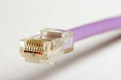 Un câble du réseau RJ45 photographie stock libre de droits
