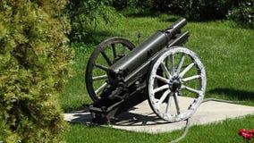 Un cañón en la exhibición almacen de metraje de vídeo