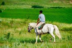 Un caballo de montar a caballo del hombre joven en el prado Fotos de archivo libres de regalías