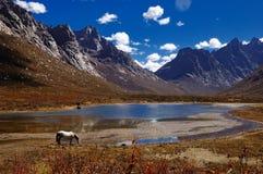 Un caballo más allá de un lago y de una montaña Foto de archivo libre de regalías
