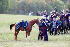 Un caballo marrón hermoso que lleva el horsecloth azul coloca y menea su cola Fotografía de archivo libre de regalías