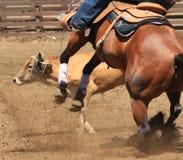Un caballo que compite con del barril Fotos de archivo