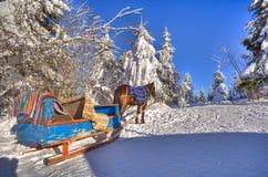 Un caballo y un carro están en los abetos sitiados por la nieve foto de archivo