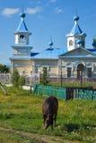 Un caballo y una iglesia ortodoxa en el campo ruso fotos de archivo