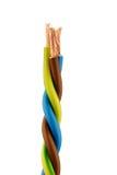 Un cable eléctrico con el enchufe Imagen de archivo libre de regalías