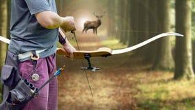 Un cacciatore dell'arco che punta su un dollaro della coda bianca contro Fotografia Stock Libera da Diritti