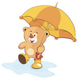 Un cachorro de oso y un paraguas Imágenes de archivo libres de regalías